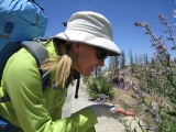 Video – Life on the PCT 2012
